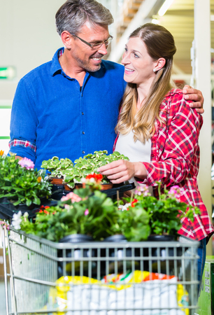 home improvement store: Clerk attending customer in garden department of home improvement store Stock Photo