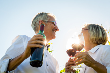 vineyard: Senior couple toasting with wine glasses in vineyard, woman and man toasting each other