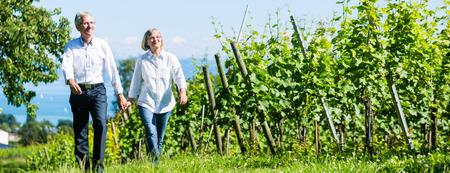 Senior paar, vrouw en man, met wandeling in de wijngaard