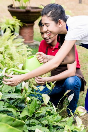 Happy young woman using a green watering can in the garden next to her partner in a sunny day Stock Photo