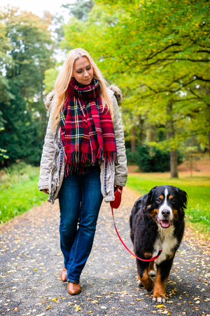 Woman walking the dog on leash in park on path covered with colorful fall foliage