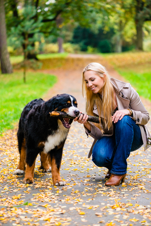 Woman and dog at retrieving stick game in fall park on dirt path Stock Photo