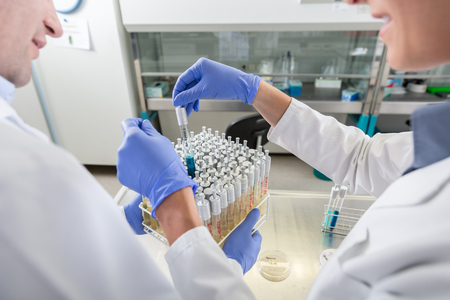 Scientist arrange samples for test in research lab