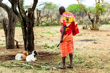 Farmer of the Massai tribe checking on his goats Standard-Bild - 94297232