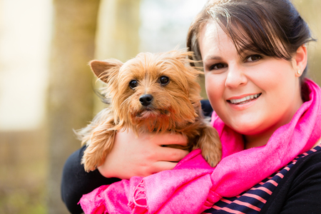 Cute Yorkshire Terrier on arm of dog mama