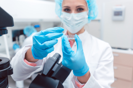 Scientist in laboratory showing petri dish with fertilized egg cell in her hand