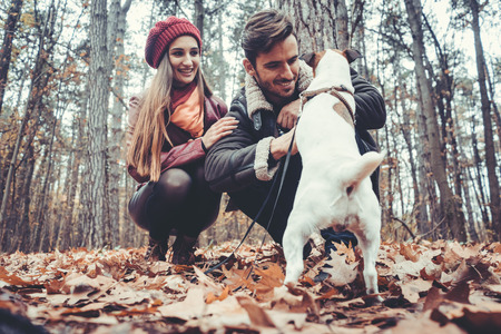 Couple of woman and man playing with their dog in colorful fall landscape