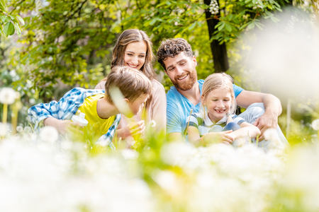 Family sitting on a meadow in summer or spring amidst dandelion flowers Imagens