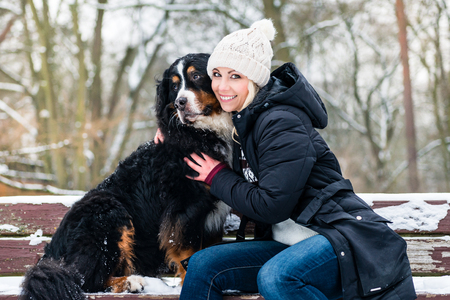 Woman walking Bernese mountain dog on a winter day in the snow