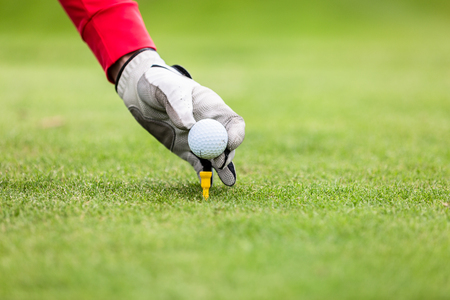 Golfers hand putting golf ball on tee in golf course Stock Photo