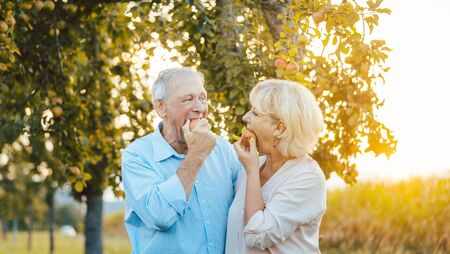 Senior woman and man enjoying an apple in late summer sunset biting into the fruit