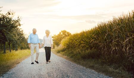 Senior woman and man having a walk along a field holding hands