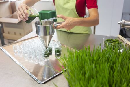 Woman filling healthy wheatgrass smoothie in glasses