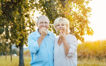 Ältere Frau und Mann genießen einen Apfel im Spätsommersonnenuntergang und beißen in die Frucht