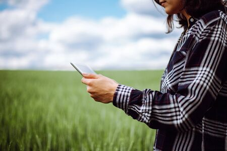 Young woman farmer wearing checkered shirt is checking harvest progress on a tablet at the green wheat field. New crop of wheat is growing. Agricultural and farm concept