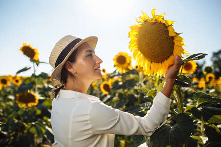Young beautiful woman wearing a hat and a white dress touches the sunflower on the field during sunset on the summer day. Summer season, freedom, love concept.