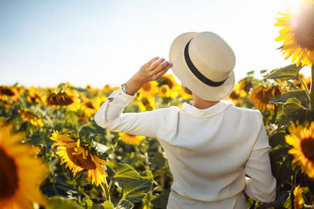 Young woman in a field of sunflowers stands back and looks at the sunset feeling freedom and joy. Female wearing a white dress touches her hat with a hand. Happiness and summer concept. Reklamní fotografie - 153228274