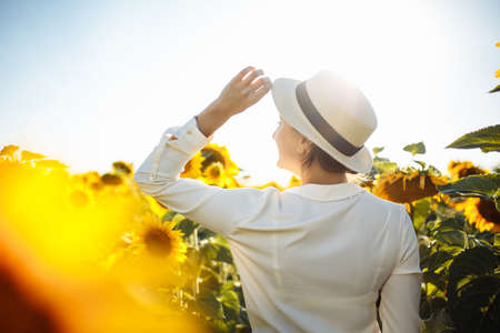 Young woman in a field of sunflowers stands back and looks at the sunset feeling freedom and joy. Female wearing a white dress touches her hat with a hand. Happiness and summer concept. Reklamní fotografie - 153277711