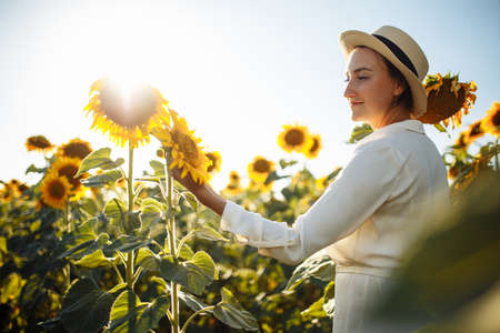 Young beautiful woman wearing a hat and a white dress touches the sunflower on the field during sunset on the summer day. Summer season, freedom, love concept. Reklamní fotografie - 153277771