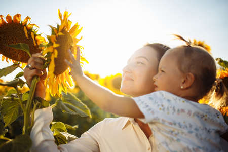 Young mother and her little daughter having fun and enjoy life at the sunflower field on a bright sunny summer day. Summer holiday with family. Happiness, freedom and family values concept.