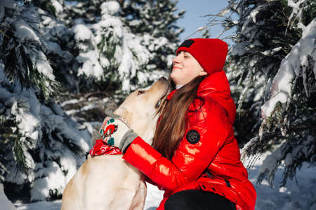 Girl wearing red jacket and her labrador retriever hug and have fun at a winter snowy park. Owner and her dog sit among fir trees in the forest. Friendship, pets and holidays concept.