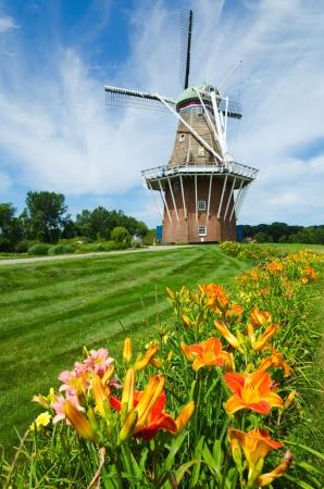 Zomerbloemen met historische Duch windmolen op achtergrond Stockfoto