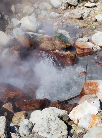 Hot springs in Furnas / Sao Miguel / Azores Banco de Imagens