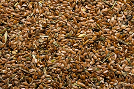 flax seeds for further processing Stock Photo - 17616629