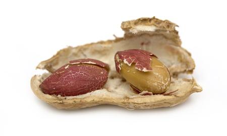 peanuts, peanut Stock Photo - 17615912