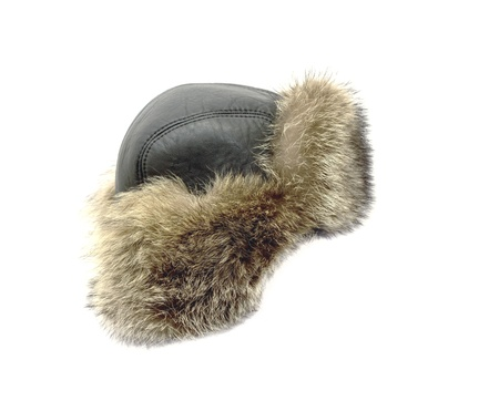 Raccoon winter hat on a white background Stock Photo