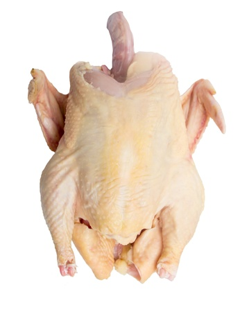 carcass: Carcass of the whole chicken ready to preparation on a white background