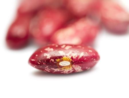beans pattern  Stock Photo - 17646121