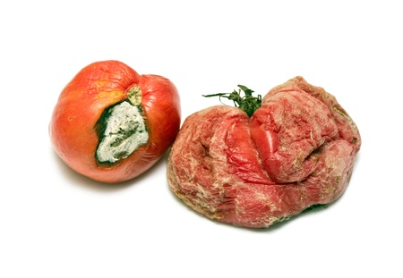moulder: rotten tomato on a white background