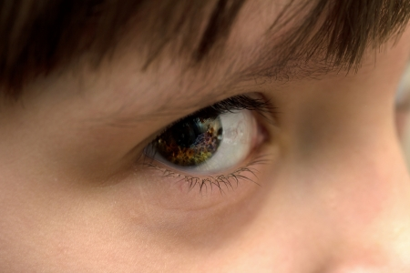 maquillage: Macro image of human eye