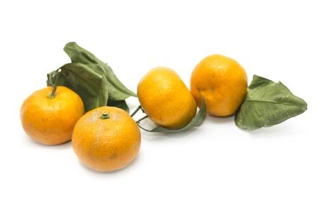Mandarin isolated on white background Stock Photo - 17635896
