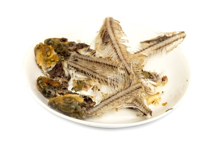 fish bones on a plate