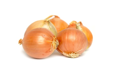onions on a white background photo
