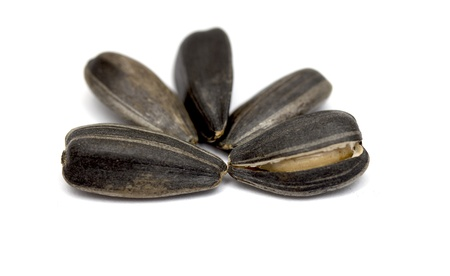 Black sunflower seeds on a white background photo