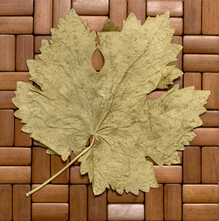 grape leaf on a wooden background photo