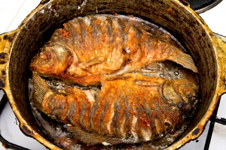 fried bream Stock Photo - 18460896