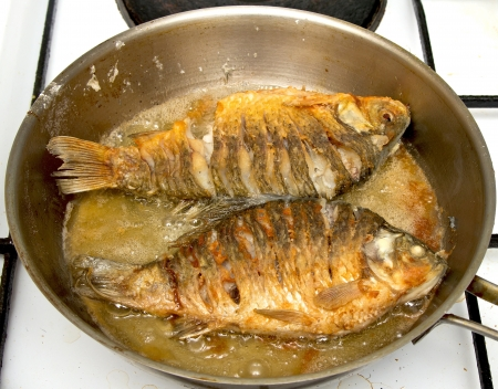 fried bream Stock Photo - 18463193