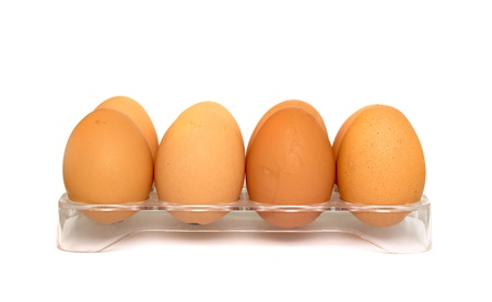 chicken egg white on a gray background photo