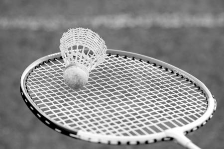 rapidity: badminton shuttlecocks on racket