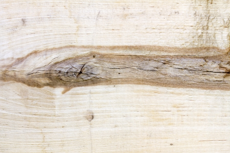 Color photo of a rough wooden surface photo