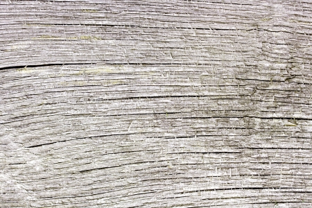 mangy: Pattern of old weathered timbered wall, great background, texture, wallpaper