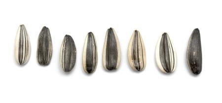 sunflower seeds: raw sunflower seeds Stock Photo