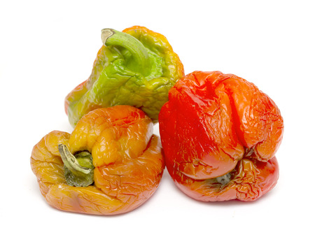 sluggish old pepper on a white background Stock Photo