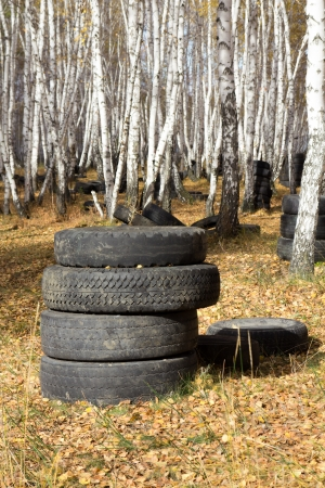 Old automobile tyre thrown out in a forest Stock Photo - 22692301