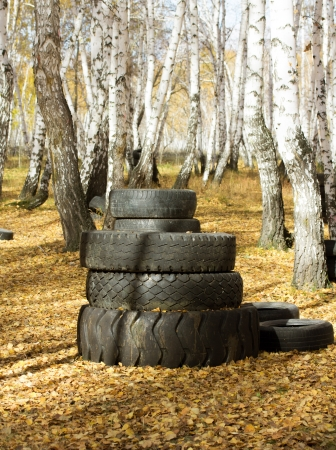 Old automobile tyre thrown out in a forest Stock Photo - 22692307