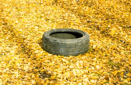 Old automobile tyre thrown out in a forest Stock Photo - 22692318